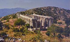 Είναι το πρώτο φιλμ για το ναό του επικούρειου Απόλλωνα που έχτισε ο Ικτίνος στην κορυφή ενός βουνού.