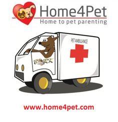 #Pet #Ambulance Services #home4pet for more visit.....