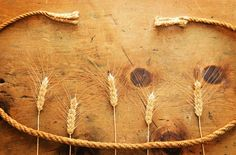 Vintage wheat and rope 3 by WonderMe on Creative Market