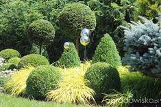 Organic gardening for healty food Vegetable Planting Guide, Vegetable Garden Design, Planting Vegetables, Back Gardens, Outdoor Gardens, Organic Gardening, Gardening Tips, Rogers Gardens, Love Garden