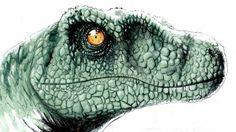 speed drawing / painting velociraptor from jurasik world film.Made by watercolor,pen and charcoal in wich you can see how i draw / paint this disonaur :-)  un disegno veloce del velociraptor dal film jurassik world .realizzato con acquarelli,penna e matita carboncino in cui potete vedere come disegno questo dinosauro :-)