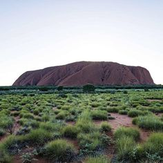 An incredible capture of #Uluru from our photographer @mtwee1 part of our #campaignforcountry feature on Alice Springs. Discover more about the spiritual heart of #Australia in our March issue. #countrystylemag #countrystyleloves #landscape  via COUNTRY STYLE MAGAZINE OFFICIAL INSTAGRAM - Celebrity  Fashion  Haute Couture  Advertising  Culture  Beauty  Editorial Photography  Magazine Covers  Supermodels  Runway Models