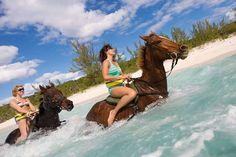 Horseback Swim Ride - Discount Excursions Grand Cayman - Cruise Shore Excursions & Tours