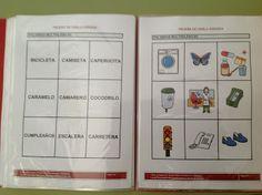 PRUEBA DE EVALUACIÓN / LOTOS FONÉTICOS / TABLAS DE REGISTRO