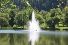 McGuire Lake Park (Salmon Arm) - All You Need to Know Before You Go - UPDATED 2018 (Salmon Arm, British Columbia) - TripAdvisor