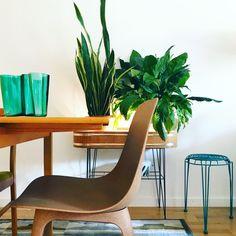 Plants, greenplants, iittala, retro, växter, interior, inredning Wishbone Chair, Interior Design, Retro, Furniture, Home Decor, Nest Design, Decoration Home, Home Interior Design, Room Decor