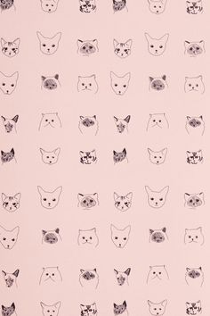 cat pattern - Buscar con Google