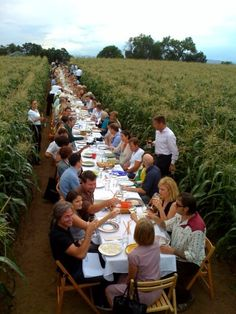 outstanding in the field photos - dinner on a farm - farm to table dining