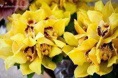 Yellow orchids bridesmaids bouquets http://studios.MeewMeew.com Hawaii, Maui, Oahu, Big Island, Kauai Wedding Photorapher - MeewMeew Studios