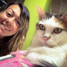 Ein #Selfie mit der hübschen Kiki aus dem @catncoffee  Wer von euch war schon mal in einem Katzencafé? Ich persönlich liebe das #katzencafe in #Klagenfurt da es dort einfach super gemütlich ist & die Samtpfoten einfach großartig sind  Für mich geht es heute nicht ins #catncoffee sondern zum Tierarzt. Dort halte ich gemeinsam mit der Tierärztin einen Vortrag zum Thema Welpenzeit  #pfoetchentraining #lycheethepoodle #klagenfurtamwörthersee #wörthersee #visitklagenfurt #kärnten #cat #katzen… Klagenfurt, Training, Selfie, Cats, Instagram, Animals, Vet Office, Puppys, Love