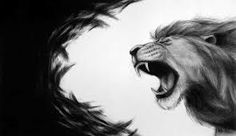 roaring lion drawing - Google Search