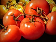 Red Ripe Tomatoes A Fine Art Photograph by RandyNyhofPhotos