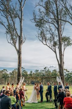 You too can get married under these incredible gum trees! Wandin Valley Estate - Hunter Valley Wedding Venue | PHOTO CREDIT: Matts Photography | @mattsphotoau