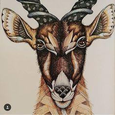 Antelope | Millie Marotta's Animal Kingdom #MillieMarotta #Antelope #Color…