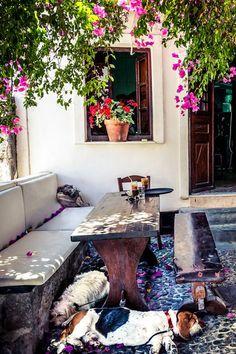 Raki Tavern - Megalochori, Santorini, Greece