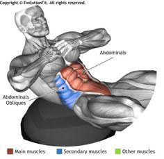 ABDOMINALS - CRUNCHES ON BOSU