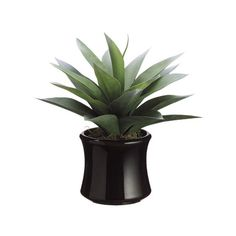 Faux Agave Plant Garrison Hullinger Interior Design ❤ liked on Polyvore featuring home, home decor, floral decor, plants, fillers, decor, flowers, plantas, flower home decor and contemporary home decor