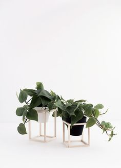 Avec quelques morceaux de bois et un peu de patience, fabriquez des supports de pot qui donneront un style minimaliste et design à votre chez vous.