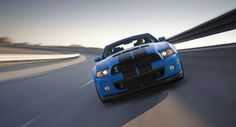 shelby mustang (6)