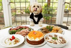Join the fight to stop obesity in dogs. Start by taking care of your own pooch's food portions and the type of food you feed him or. Head over to http://barkbargains.com for great dog diet, dog obedience and dog training tips as well as great bargains on pet products.