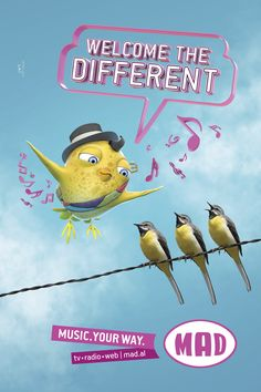 MAD | Birds Albania, Pikachu, Mad, Birds, Illustration, Movie Posters, Fictional Characters, Film Poster, Bird