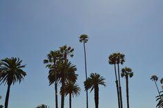 Summer #LA