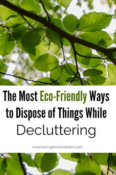 The Most Eco-Friendly Ways to Dispose of Things While Decluttering - Nourishing Minimalism Small Space Organization, Decluttering, Minimalism, Eco Friendly, Organize, Plant Leaves, Live, Simple, Ideas