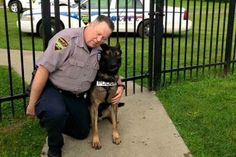 Fate of Ohio K9 Ajax hangs in the balance as partner rejects City's offer