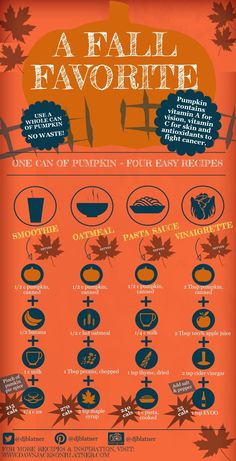 One can of pumpkin to make 4 easy recipes!