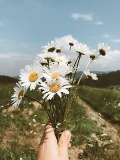 Jesus got you - & he can do anythaaaang Aesthetic Photography Nature, Landscape Photography, Nature Photography, Beautiful Landscape Wallpaper, Beautiful Landscapes, Flowers Nature, Beautiful Flowers, Sunflower Wallpaper, Flower Aesthetic