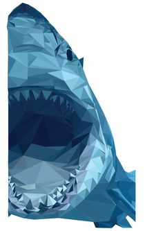 Shark - Vector image created by individual triangles of individual colour. 13/10/15