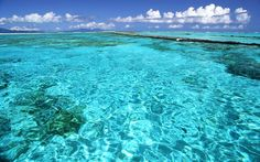 Bora, Bora...Enjoy clear water and lay the whole day on a beach like this is the most desired activity for a perfect vacation in the Polynesia, and of course, if you are also looking for adventure here you will find a lot of crazy activities to enjoy.