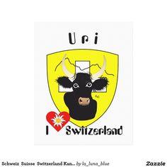 Schweiz  Suisse  Switzerland Kanton Uri Galerie Faltleinwand