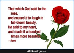 That which God said to the rose, and caused it to laugh in full-blown beauty, He said to my heart, and made it a hundred times more beautiful. Rumi  http://bit.ly/2cf3Brc
