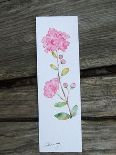 **Crape myrtle - hand-painted watercolor bookmark (original work)** This bookmark is an original work painted directly on the watercolor paper, and e. Watercolor Bookmarks, Easy Watercolor, Watercolor Cards, Watercolour Painting, Watercolor Flowers, Painting & Drawing, Diy Bookmarks, Book Markers, Handmade Flowers
