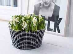 Flowers in wire basket