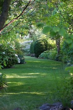 I love lawns that curve away out of sight, promising more yard beyond.