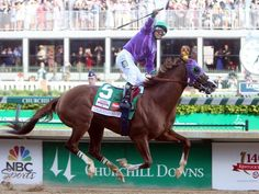California Chrome - winner 140th Kentucky Derby  2014