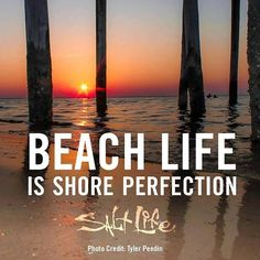 Beach life is shore perfection!