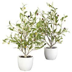 <li>Materials: Polyester material, plastic, iron wire, ceramic</li> <li>Plant type: Olive</li> <li>Perfect decorative accent for home or office</li>