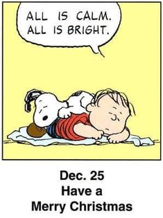 This is a classic countdown panel from 1999 Days To Christmas, Peanuts Christmas, Charlie Brown Christmas, Charlie Brown And Snoopy, Christmas Quotes, Christmas Pictures, Christmas Humor, Merry Christmas, Christmas Greetings