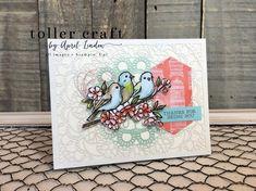 Bird Ballad
