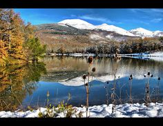 Zalduondo Alava Euskadi, Basque Country #euskadi #basquecountry #Alava #monte