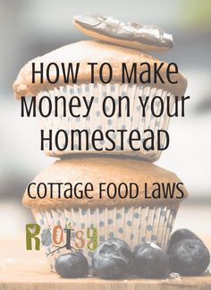 Wondering how to make money from home? Let us walk you through your State's Cottage Food Laws! Home Bakery Business, Baking Business, Cake Business, Business Ideas, Homestead Farm, Homestead Living, Homestead Survival, Selling Eggs, Jam And Jelly