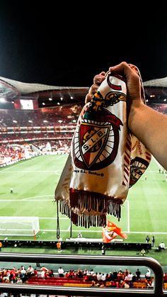 Benfica Wallpaper, Muscle, Darwin, Social Platform, Golf Bags, Iphone Wallpaper, Soccer, Football, Bingo