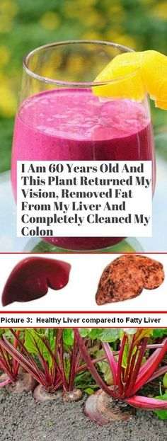 I am 60 Years Old & This Plant Returned My Vision, Removed Fat From My Liver & Completely Cleaned My Colon!!! - Way to Steal Healthy