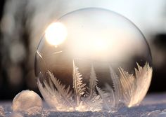 Find beautiful winter season images free from our handpicked collection ✓ HD to quality ✓ Free for commercial use ✓ No attribution required! Write On Pictures, Free Pictures, Free Images, Frozen Bubbles, Soap Bubbles, Winter Season Images, Photo Illustration, Graphic Illustration, Quantum Entanglement