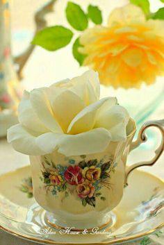 "♫ ""I love flowers filling a tea cup! X ღɱɧღ Yellow Cottage, Rose Cottage, Vintage China, Vintage Tea, Colorful Drinks, Wine Cocktails, Cocktail Recipes, Flower Tea, My Tea"