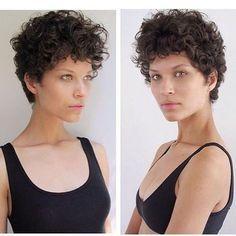 Ari Westphal short and curly haircut