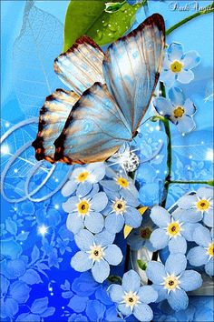 Forgetmenots and a beautiful butterfly! Butterfly Gif, Butterfly Pictures, Butterfly Painting, Butterfly Wallpaper, Butterfly Kisses, White Butterfly, Beautiful Butterflies, Beautiful Flowers, Art Papillon